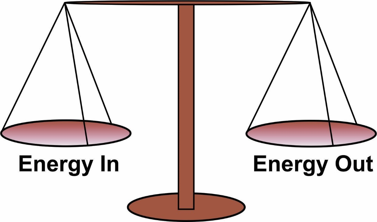 photo What Is Energy Balance